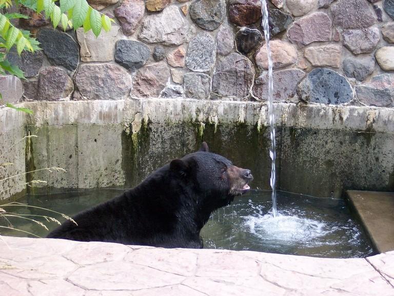 Baraboo Zoo