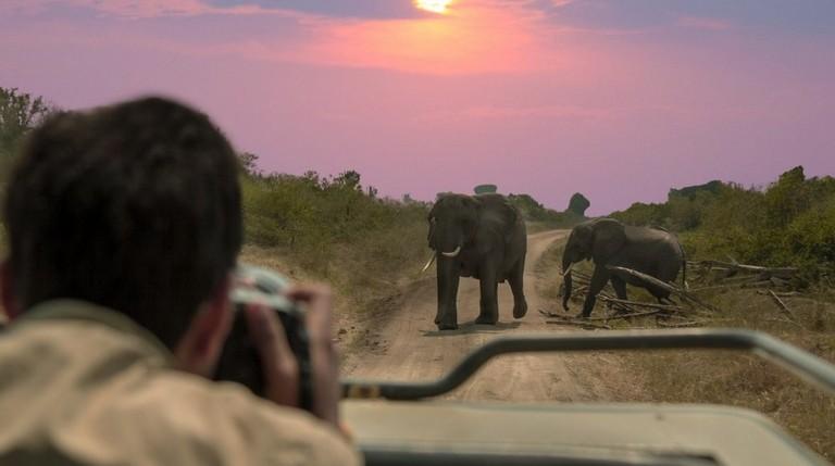 Best Time To Visit Kruger National Park