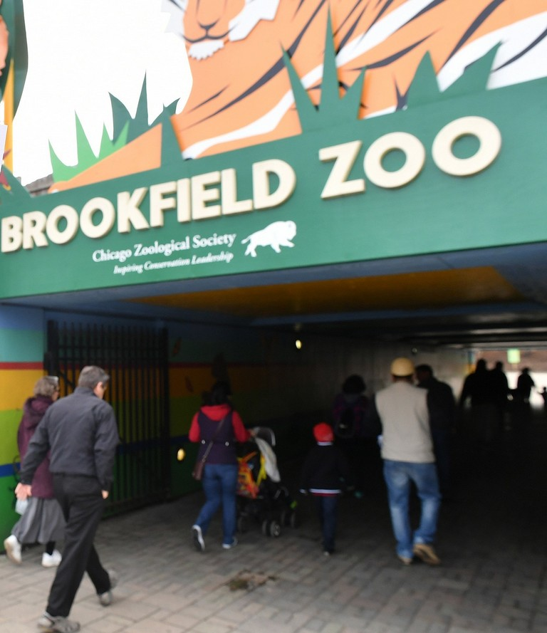 Brookfield Zoo Parking