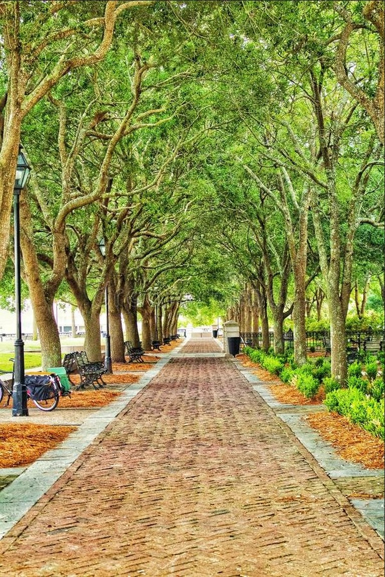 Charleston South Carolina Tourism