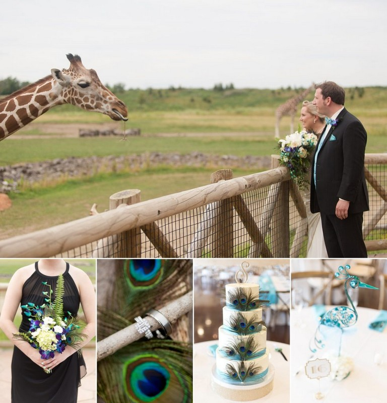 Columbus Zoo Wedding