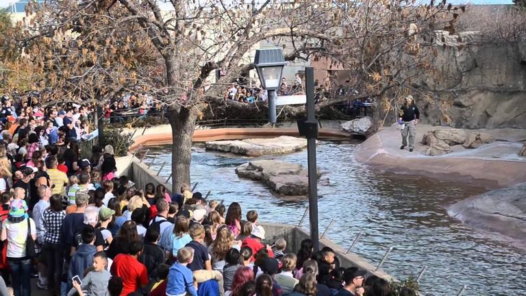 Denver Zoo Free Day