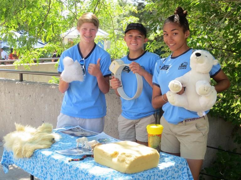 Denver Zoo Volunteer