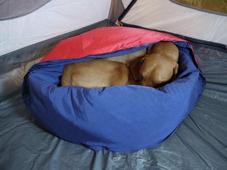 Dog Sleeping Bag Backpacking