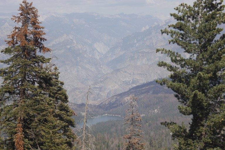 Drive To Sequoia National Park