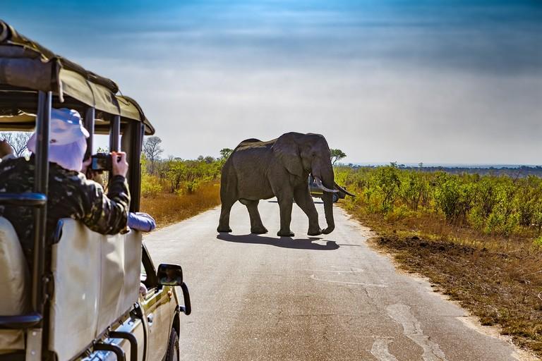 Flights To Kruger National Park