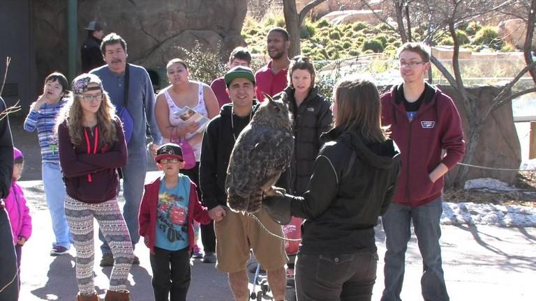 Free Days Denver Zoo