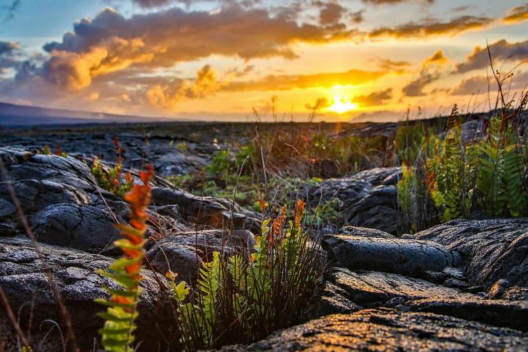 Hawaii Volcanoes National Park Lodging