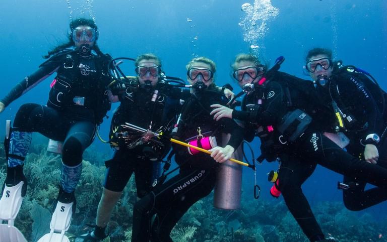 Lynnhaven Dive Center