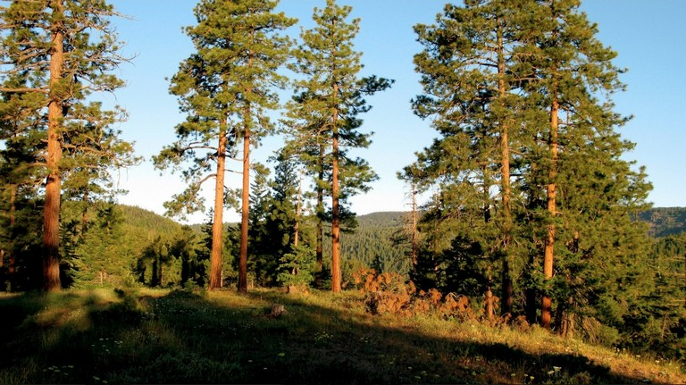 Oak Creek Recreation