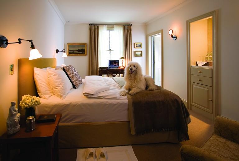 Hotels Near Me Pet Friendly Inspirational Pocono Mountains Pet Friendly Hotels