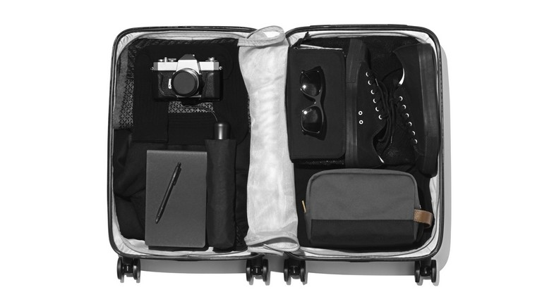 Raden Suitcase Review
