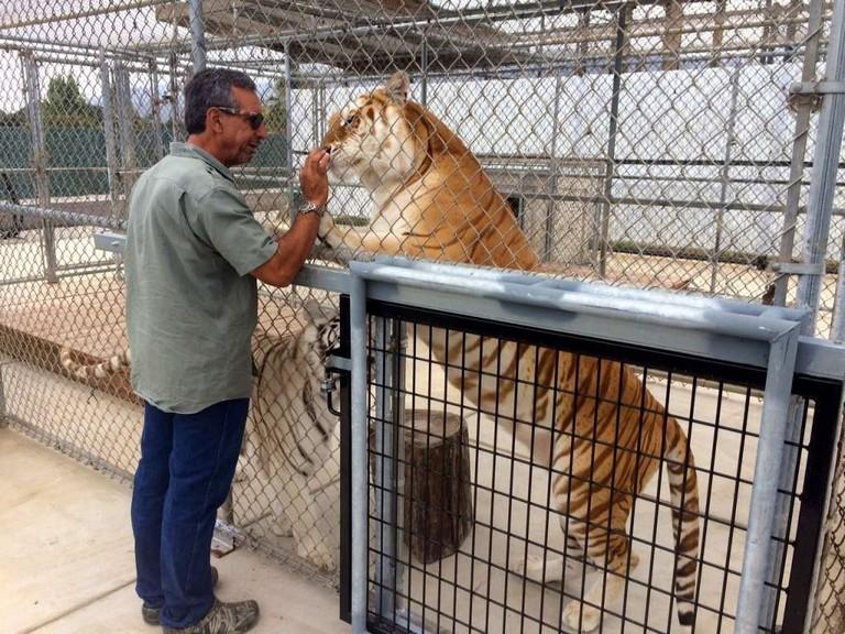 Salinas Zoo