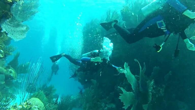 Scuba Diving Bermuda