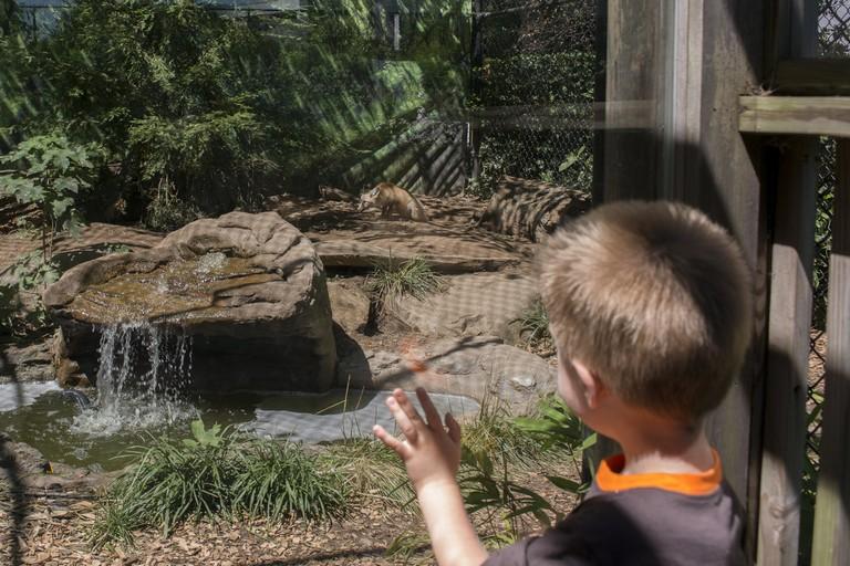 Staten Island Zoo, Staten Island