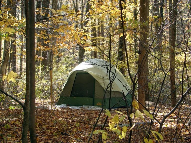 Tent Campsites Near Me