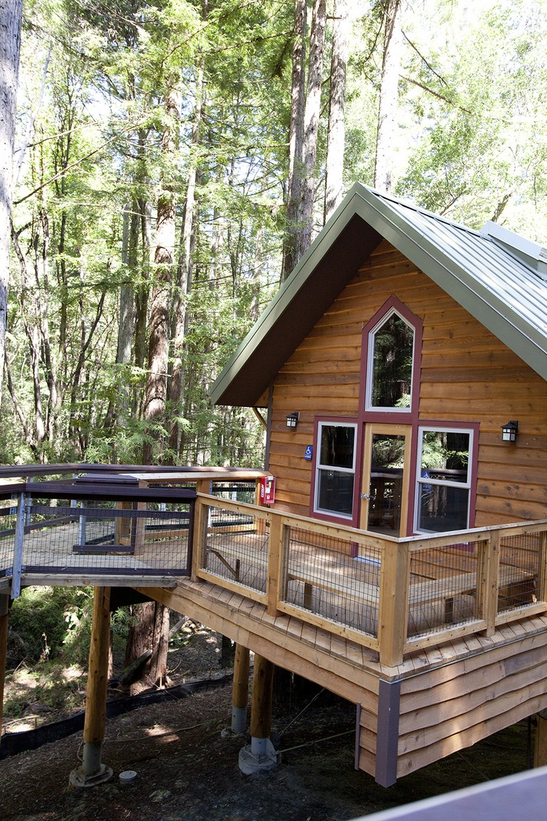 Treetop Cabins