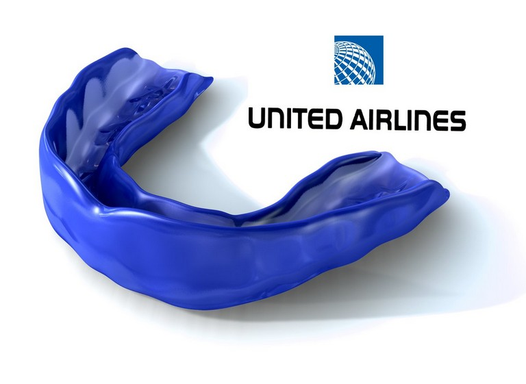 United Airlines Travel Pillow