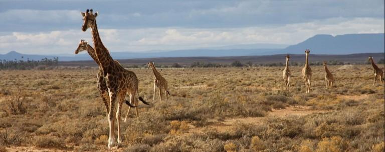 Weather Kruger National Park