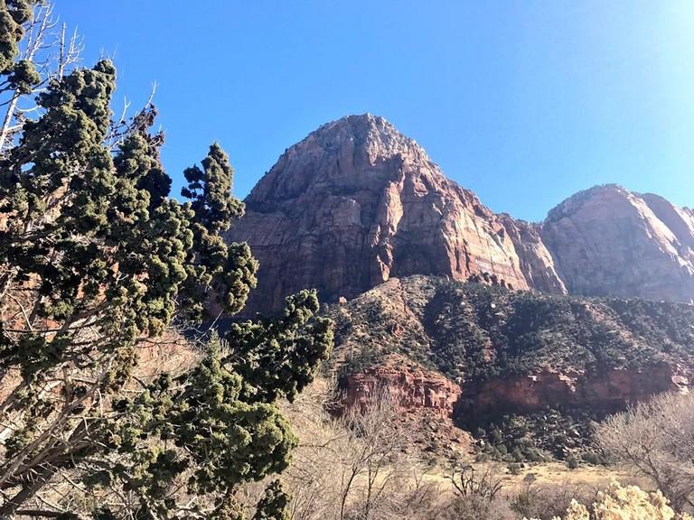 Zion National Park Rock Slide