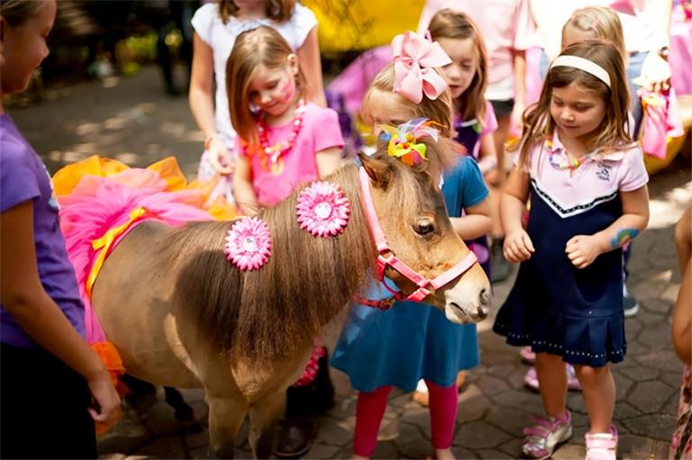 Zoo Atlanta Birthday Party