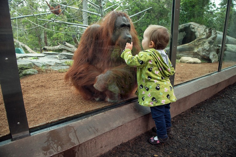 Zoo Hours San Diego