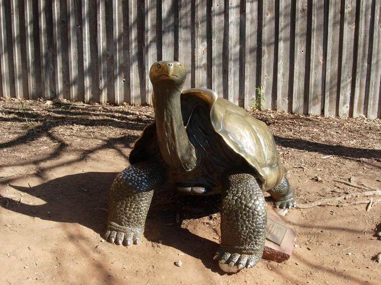 Zoo Okc Ok